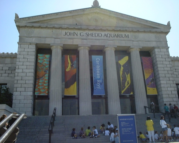 JOHN G. SHEDD AQUARIUM in Chicago Illinois