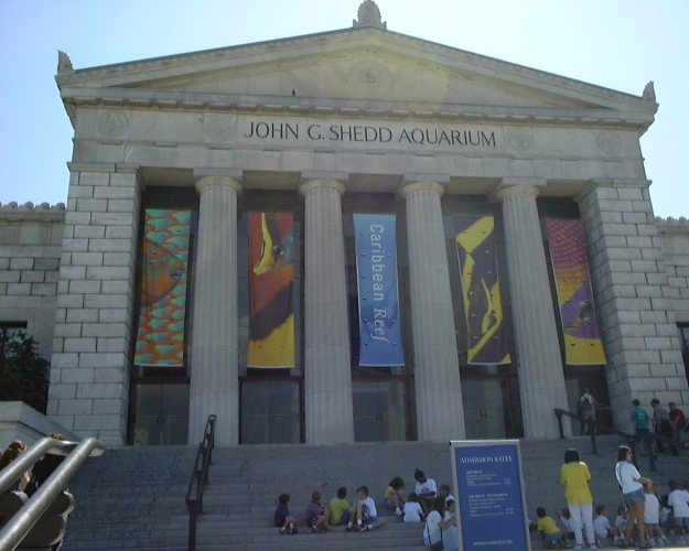JOHN G. SHEDD AQUARIUM in Chicago Illinois