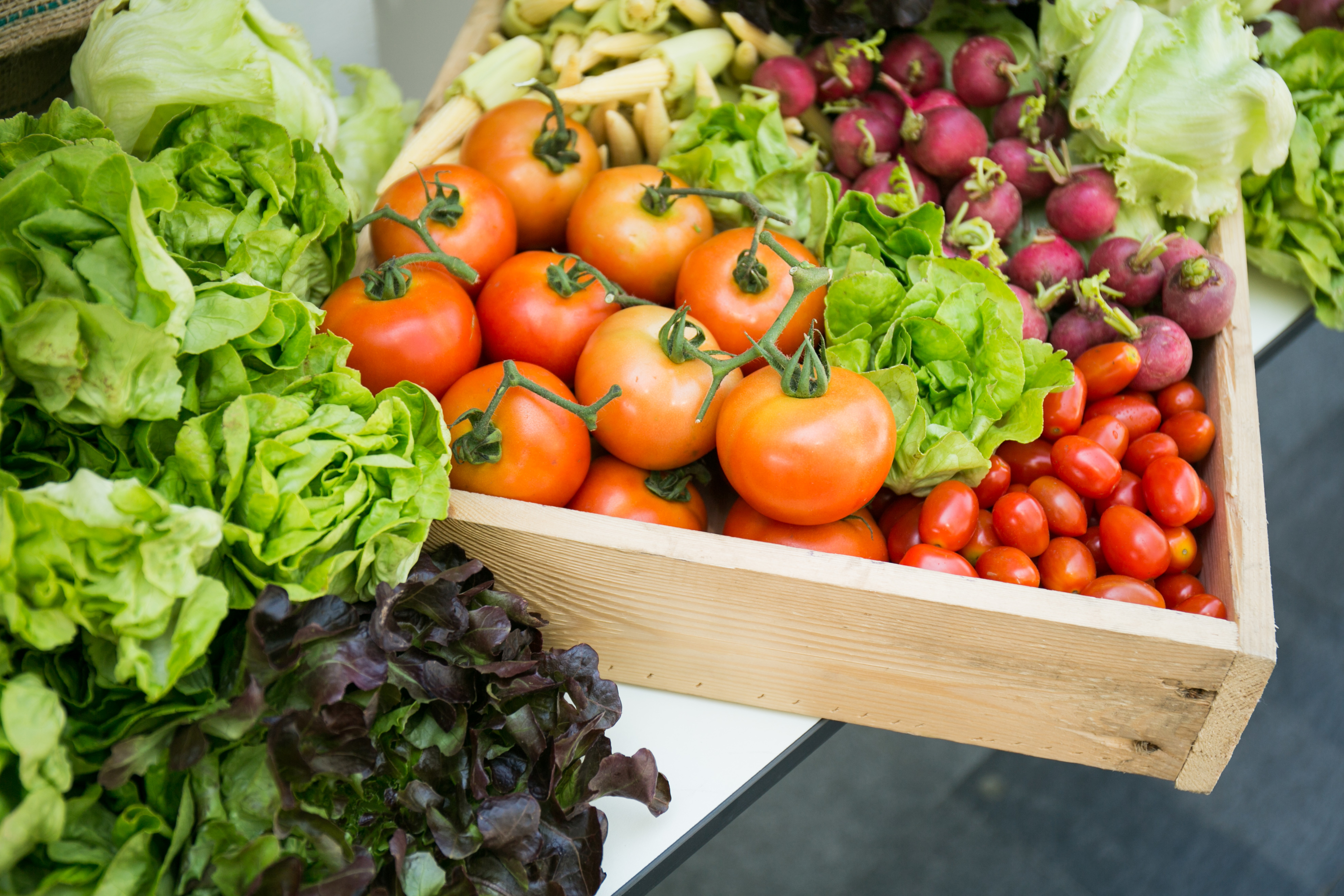 fresh vegetables-lettuce, tomatoes, radishes