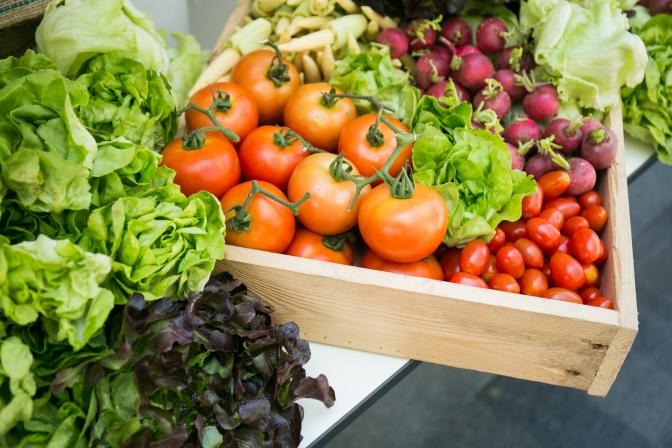 fresh vegetables-lettuce, tomatoes, radishes