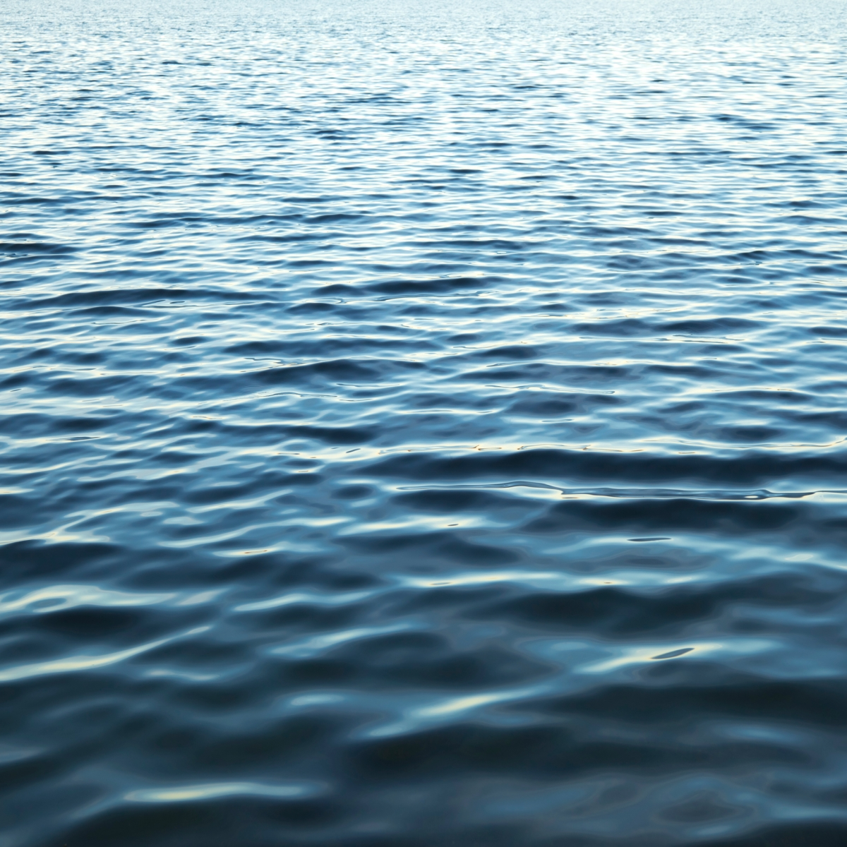 An image of a large body of water