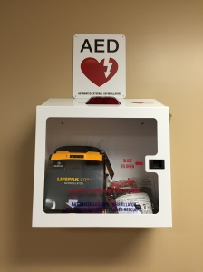 Fewer than 10% of persons with sudden cardiac arrest survive.