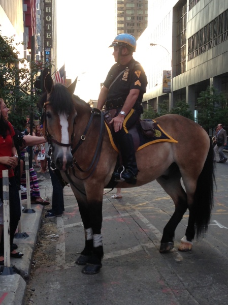 mounted police officer
