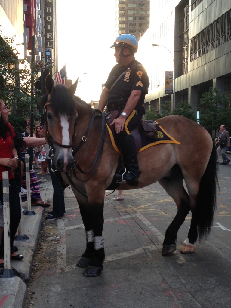 a New York City police officer and his horse represent the city proudly