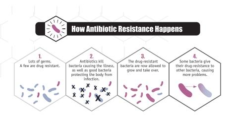 How antibiotic resistance develops