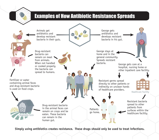National Summary Data, Antibiotic Resistance