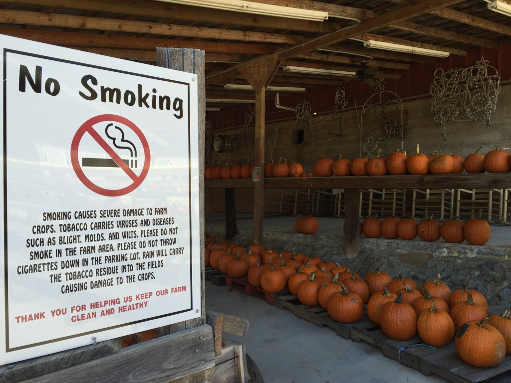 No Smoking sign with pumpkins