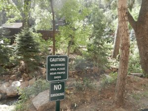 sign says NO smoking, wilderness area