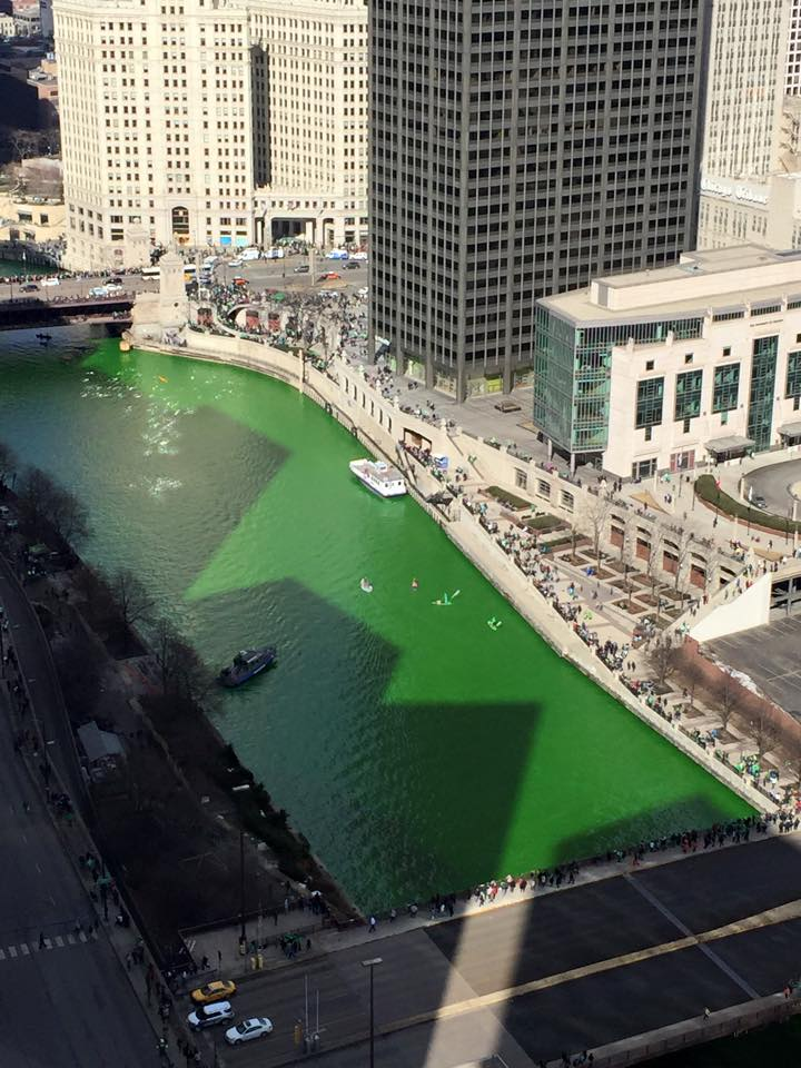 The Chicago river is dyed green .