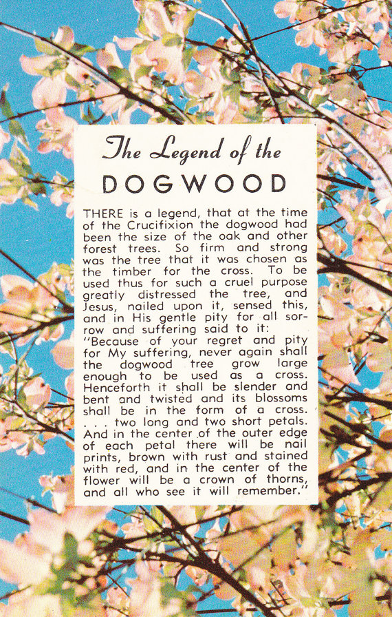 legend of the dogwood