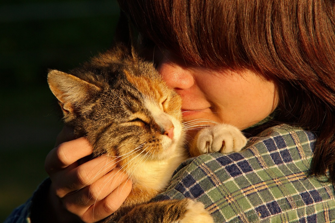 People whisperers- how animals help us heal