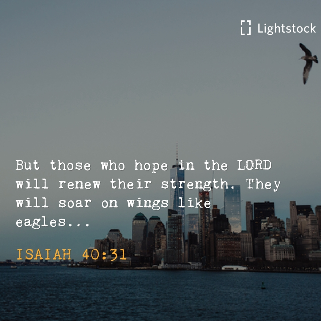 those who hope in the Lord will renew their strength.