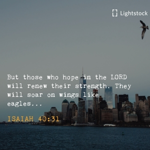 those who hope in the Lord will renew their strength, they will soar like eagles Isaiah 40:31