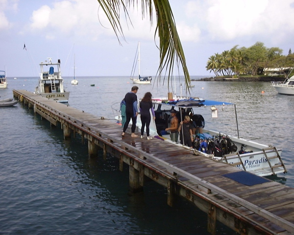boats, dock, water