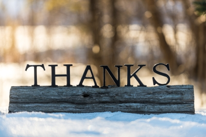 the word THANKS on a log