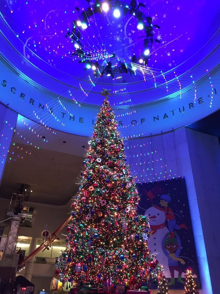 beautiful large Christmas tree