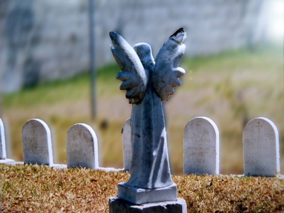 angel statue in a cemetery