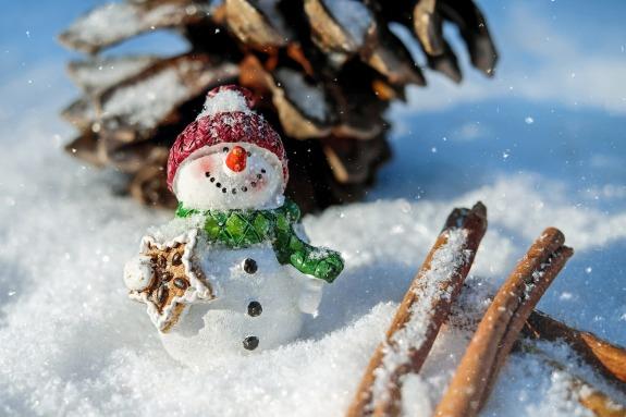 a cute snowman