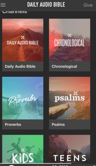 DAILY AUDIO BIBLE screen shot