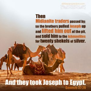 And they took Joseph to Egypt Genesis 37:28