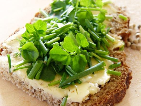 watercress leaves on bread