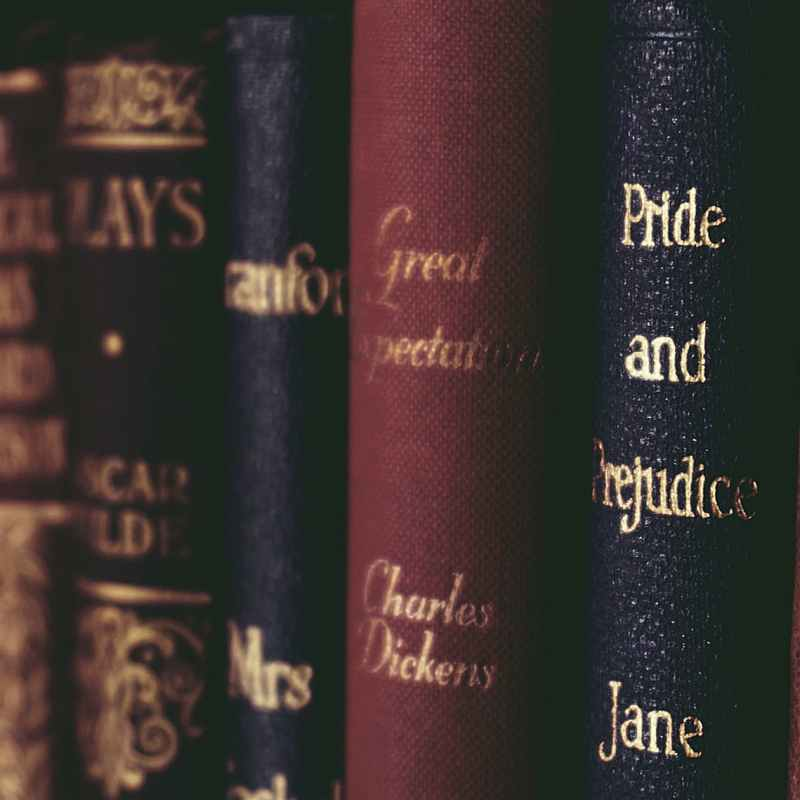 books lined up with titles of classic novels