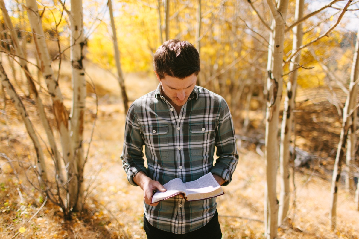 a man reading a Bible standing in a grove of aspen trees