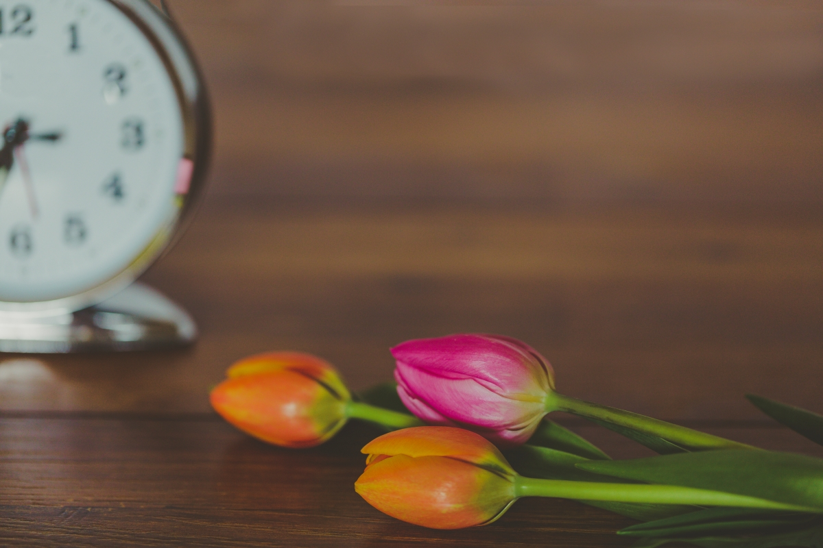 a clock with 3 tulips
