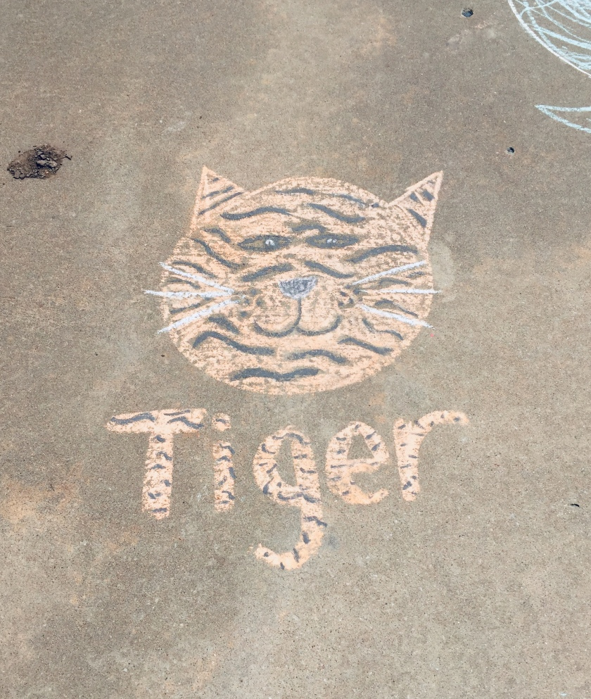 a tiger face drawn with chalk on a sidewalk